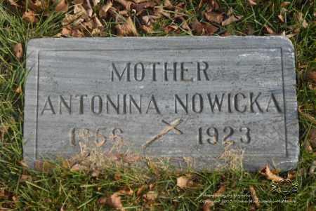 NOWICKA, ANTONINA - Lucas County, Ohio | ANTONINA NOWICKA - Ohio Gravestone Photos