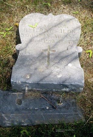 NYITRAY, ILON - Lucas County, Ohio | ILON NYITRAY - Ohio Gravestone Photos