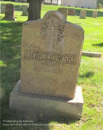 OGRODOWSKI, EDWARD - Lucas County, Ohio | EDWARD OGRODOWSKI - Ohio Gravestone Photos