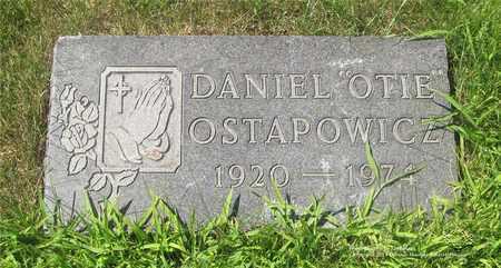 OSTAPOWICZ, DANIEL - Lucas County, Ohio | DANIEL OSTAPOWICZ - Ohio Gravestone Photos