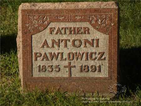 PAWLOWICZ, ANTONI - Lucas County, Ohio | ANTONI PAWLOWICZ - Ohio Gravestone Photos
