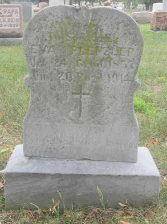 DAUER PLENZLER, EVA - Lucas County, Ohio | EVA DAUER PLENZLER - Ohio Gravestone Photos