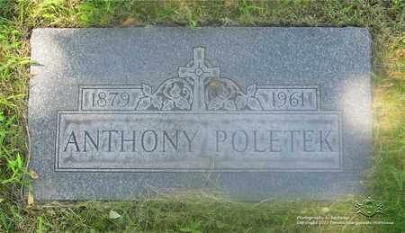 POLOTEK, ANTHONY - Lucas County, Ohio | ANTHONY POLOTEK - Ohio Gravestone Photos