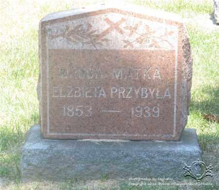 PRZYBYLA, ELZBIETA - Lucas County, Ohio | ELZBIETA PRZYBYLA - Ohio Gravestone Photos