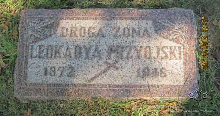 PRZYOJSKI, LEOKADYA - Lucas County, Ohio | LEOKADYA PRZYOJSKI - Ohio Gravestone Photos