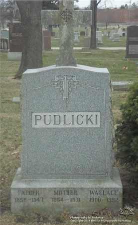 PUDLICKI, PAULINE - Lucas County, Ohio | PAULINE PUDLICKI - Ohio Gravestone Photos