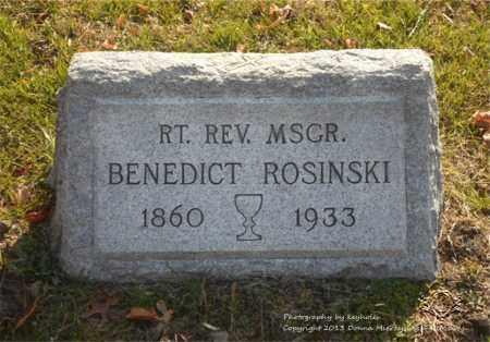 ROSINSKI, BENEDICT - Lucas County, Ohio | BENEDICT ROSINSKI - Ohio Gravestone Photos