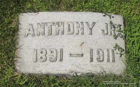 SCHRAMM, ANTHONY, JR. - Lucas County, Ohio | ANTHONY, JR. SCHRAMM - Ohio Gravestone Photos