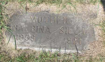 SIEJA, BALBINA - Lucas County, Ohio   BALBINA SIEJA - Ohio Gravestone Photos