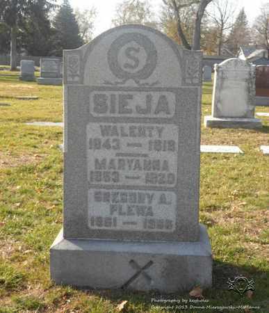 PLEWA, GREGORY A. - Lucas County, Ohio | GREGORY A. PLEWA - Ohio Gravestone Photos