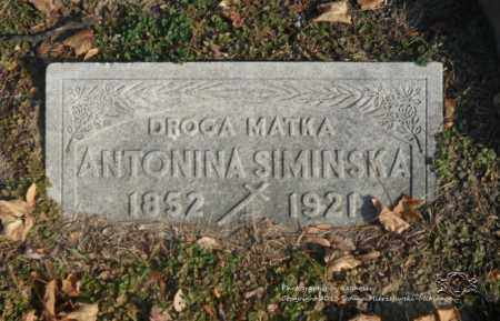 SIMINSKA, ANTONINA - Lucas County, Ohio | ANTONINA SIMINSKA - Ohio Gravestone Photos