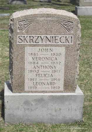 SKRZYNIECKI, ANTHONY - Lucas County, Ohio   ANTHONY SKRZYNIECKI - Ohio Gravestone Photos