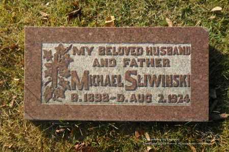 SLIWINSKI, MICHAEL - Lucas County, Ohio | MICHAEL SLIWINSKI - Ohio Gravestone Photos