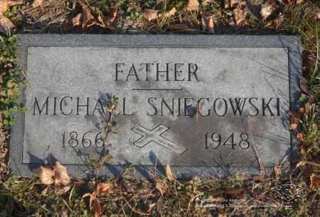 SNIEGOWSKI, MICHAEL - Lucas County, Ohio | MICHAEL SNIEGOWSKI - Ohio Gravestone Photos