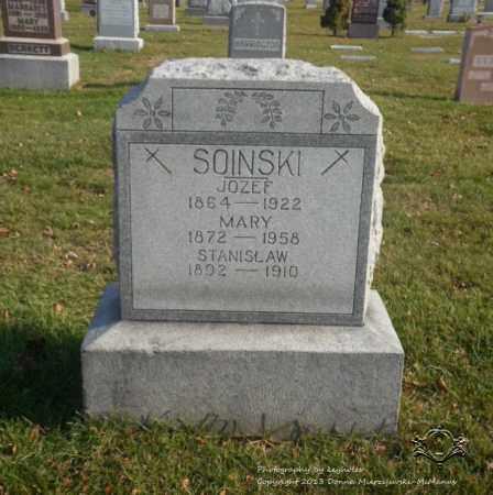 SOINSKI, MARY - Lucas County, Ohio | MARY SOINSKI - Ohio Gravestone Photos