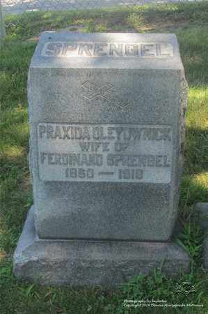 OLEYOWNICK SPRENGEL, PRAXIDA - Lucas County, Ohio | PRAXIDA OLEYOWNICK SPRENGEL - Ohio Gravestone Photos