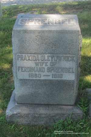 SPRENGEL, PRAXIDA - Lucas County, Ohio | PRAXIDA SPRENGEL - Ohio Gravestone Photos