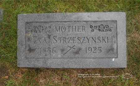 STRZESZYNSKI, EVA - Lucas County, Ohio | EVA STRZESZYNSKI - Ohio Gravestone Photos