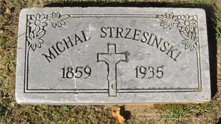 STRZESINSKI, MICHAL - Lucas County, Ohio | MICHAL STRZESINSKI - Ohio Gravestone Photos