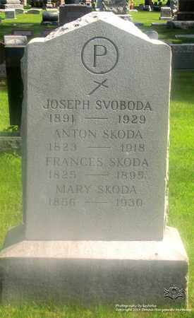 SKODA, FRANCES - Lucas County, Ohio | FRANCES SKODA - Ohio Gravestone Photos