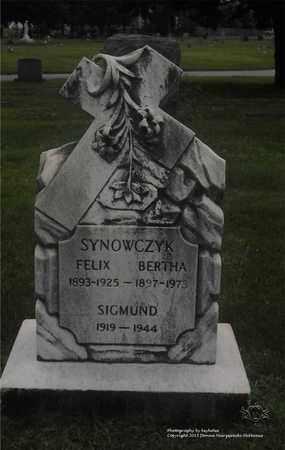SYNOWCZYK, BERTHA - Lucas County, Ohio   BERTHA SYNOWCZYK - Ohio Gravestone Photos