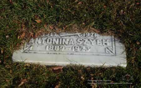 ABROSKI SZYCH, ANTONINA - Lucas County, Ohio | ANTONINA ABROSKI SZYCH - Ohio Gravestone Photos