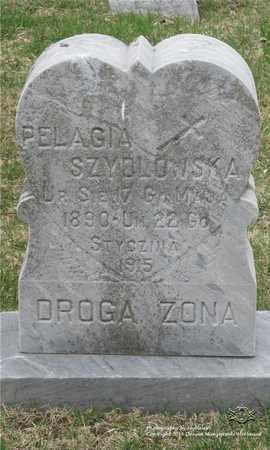 BRYZIECKI SZYDLOWSKA, PELAGIA - Lucas County, Ohio | PELAGIA BRYZIECKI SZYDLOWSKA - Ohio Gravestone Photos