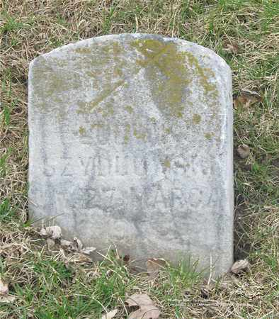 SZYDLOWSKI, LUDWIK - Lucas County, Ohio | LUDWIK SZYDLOWSKI - Ohio Gravestone Photos