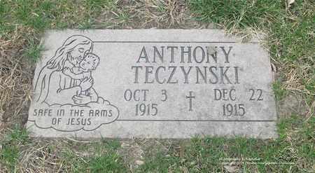 TECZYNSKI, ANTHONY - Lucas County, Ohio | ANTHONY TECZYNSKI - Ohio Gravestone Photos