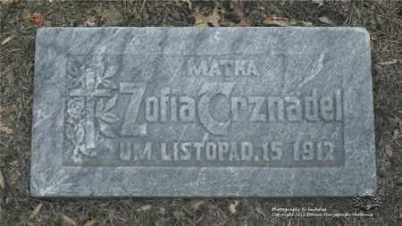GONSIOR TRZNADEL, ZOFIA - Lucas County, Ohio | ZOFIA GONSIOR TRZNADEL - Ohio Gravestone Photos