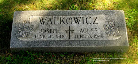 WALKOWICZ, JOSEPH - Lucas County, Ohio | JOSEPH WALKOWICZ - Ohio Gravestone Photos