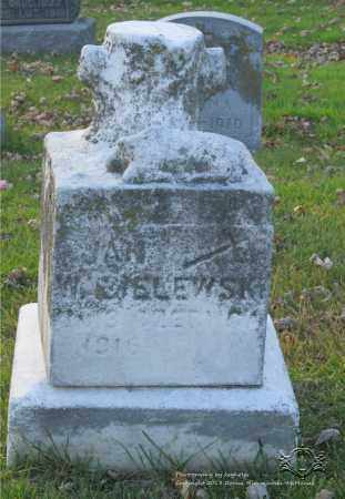 WASIELEWSKI, JAN - Lucas County, Ohio | JAN WASIELEWSKI - Ohio Gravestone Photos