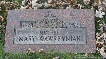 ZIOLKOWSKI WAWRZYNIAK, MARY - Lucas County, Ohio | MARY ZIOLKOWSKI WAWRZYNIAK - Ohio Gravestone Photos