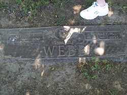 WEBB, ALPHUS, EUGENE - Lucas County, Ohio   ALPHUS, EUGENE WEBB - Ohio Gravestone Photos