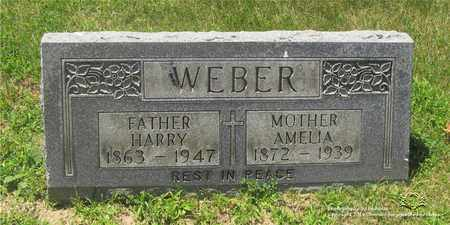 WEBER, HARRY - Lucas County, Ohio | HARRY WEBER - Ohio Gravestone Photos