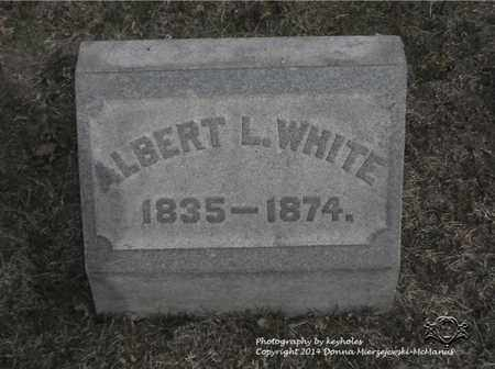 WHITE, ALBERT L. - Lucas County, Ohio | ALBERT L. WHITE - Ohio Gravestone Photos
