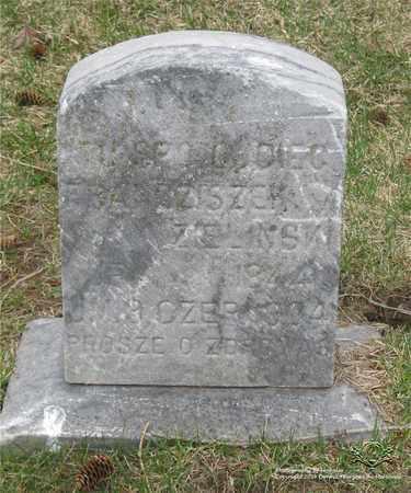 ZIELINSKI, FRANCISZEK - Lucas County, Ohio | FRANCISZEK ZIELINSKI - Ohio Gravestone Photos