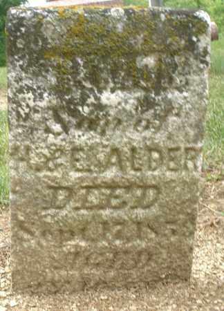 ALDER, SON - Madison County, Ohio | SON ALDER - Ohio Gravestone Photos