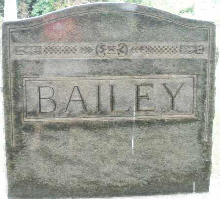 BAILEY, MONUMENT - Madison County, Ohio | MONUMENT BAILEY - Ohio Gravestone Photos