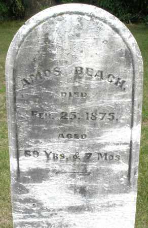 BEACH, AMOS - Madison County, Ohio | AMOS BEACH - Ohio Gravestone Photos