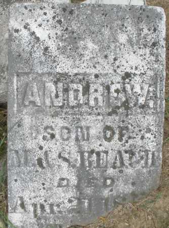 BEACH, ANDREW - Madison County, Ohio | ANDREW BEACH - Ohio Gravestone Photos