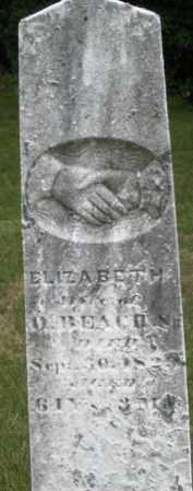BEACH, ELIZABETH - Madison County, Ohio   ELIZABETH BEACH - Ohio Gravestone Photos