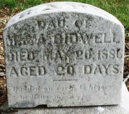 BIDWELL, DAUGHTER - Madison County, Ohio   DAUGHTER BIDWELL - Ohio Gravestone Photos