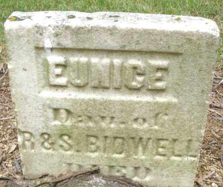 BIDWELL, EUNICE - Madison County, Ohio | EUNICE BIDWELL - Ohio Gravestone Photos