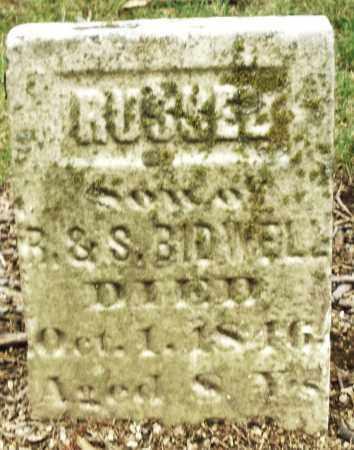 BIDWELL, RUSSEL - Madison County, Ohio   RUSSEL BIDWELL - Ohio Gravestone Photos