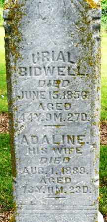 BIDWELL, ADALINE - Madison County, Ohio | ADALINE BIDWELL - Ohio Gravestone Photos