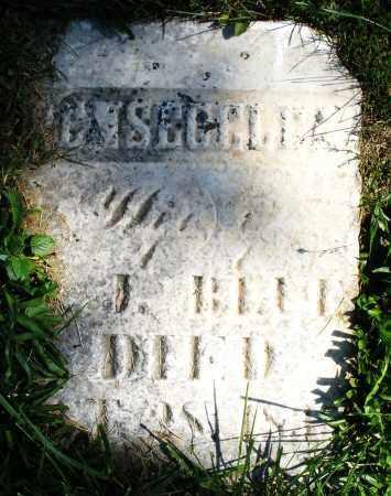 BLUE, WIFE - Madison County, Ohio | WIFE BLUE - Ohio Gravestone Photos