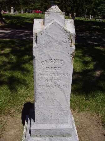 BUSSARD, BESSIE - Madison County, Ohio | BESSIE BUSSARD - Ohio Gravestone Photos