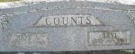COUNTS, MARY A. - Madison County, Ohio | MARY A. COUNTS - Ohio Gravestone Photos