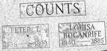 COUNTS, LOUISA - Madison County, Ohio | LOUISA COUNTS - Ohio Gravestone Photos